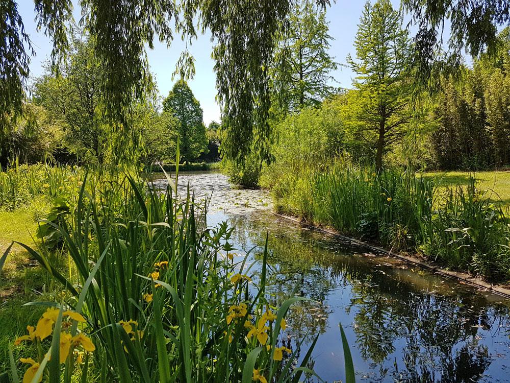 Der Loki-Schmidt-Garten in Hamburg